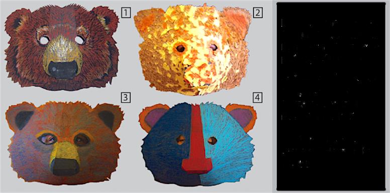 Bear samples