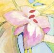 flower-button